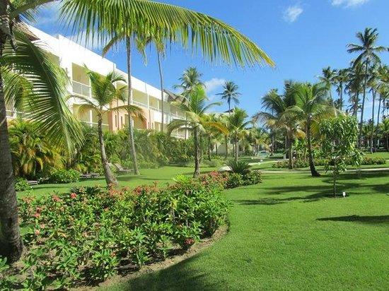 Secrets Royal Beach Punta Cana: Gartenanlage