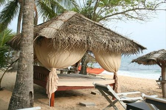 Ibis Guesthouse: Beach bed