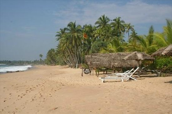 Ibis Guesthouse: Beach