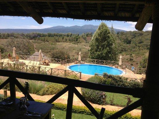 Neptune Ngorongoro Luxury Lodge : Pool Aussicht Zimmer