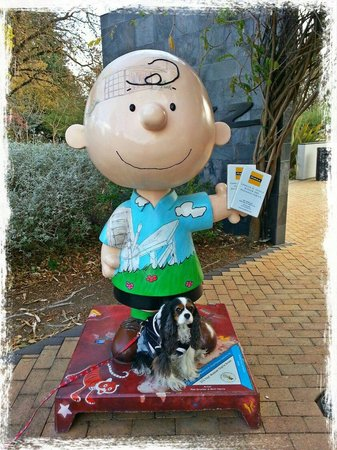 Charles M. Schulz Museum: Good Grief!