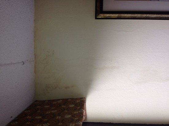 Hampton Inn Norfolk Naval Base : The wall stains