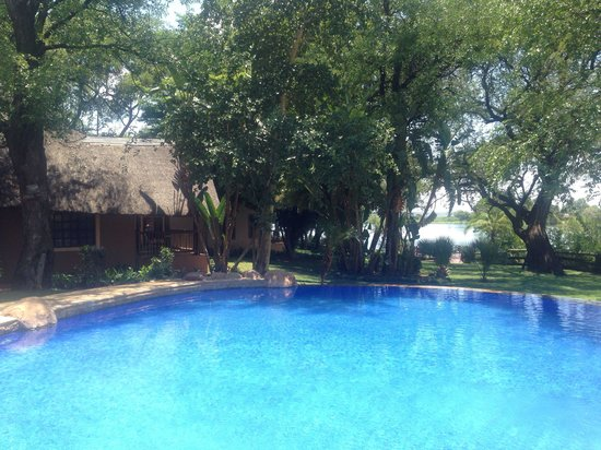 Chobe Marina Lodge: Pool area , Chobe river in background with rooms too left side