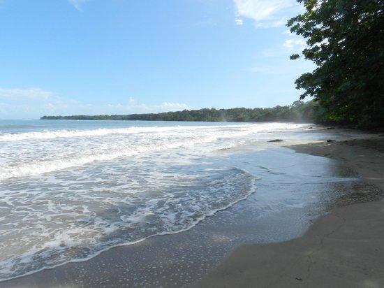 Coral Hill Bungalows: Praia de Cahuita