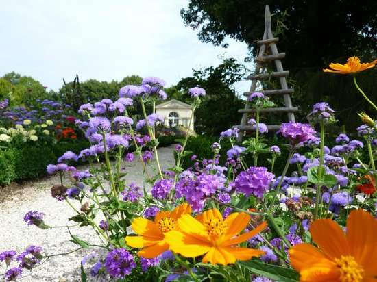 Jardin De L Arquebuse Dijon 2020 All You Need To Know Before