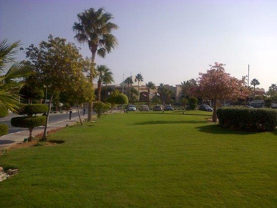 Sharm El Sheikh Marriott Resort: Gardens