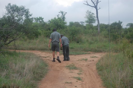 Idube Game Reserve Lodge : Rob and Titus looking for footprints /  tracking