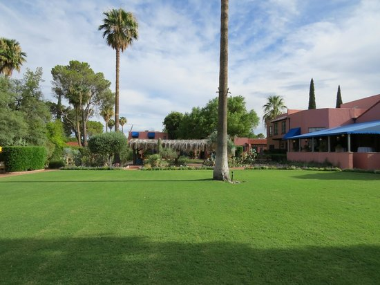 Arizona Inn: The lawn