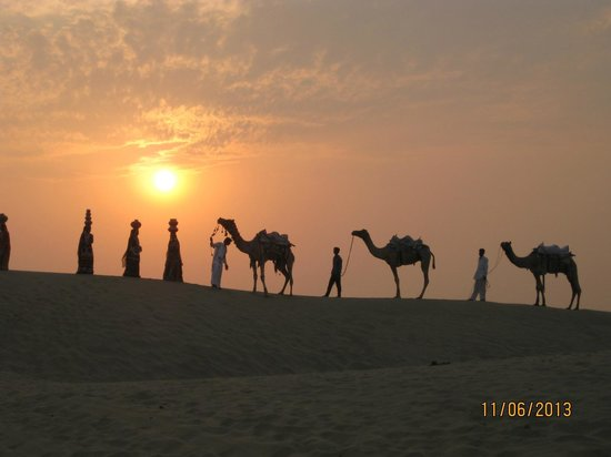 Desert Adventures Camps and Safari : Camel safari sunset