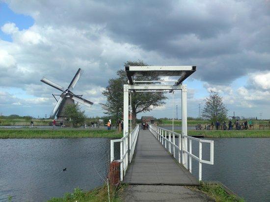 Réseau de moulins de Kinderdijk-Elshout : The bridge to the windmill.