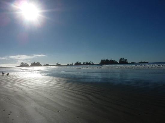 Chesterman Beach: gorgeous