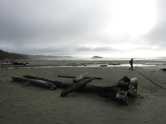 misty morning on Long beach