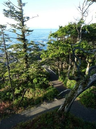 Black Rock Oceanfront Resort: part of the Wild Pacific trail