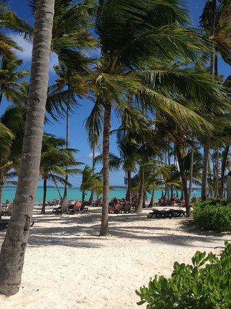 plage picture of barcelo bavaro beach adults only punta cana tripadvisor. Black Bedroom Furniture Sets. Home Design Ideas