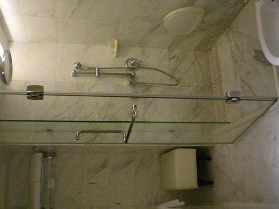 Crowne Plaza Hotel & Suites Landmark Shenzhen: Bathroom shower area