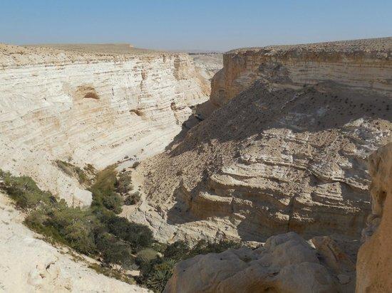 Ein Avdat National Park: arrivée au sommet de la gorge