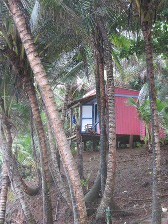 Casa Iguana : Bungalow overlooking beach and ocean