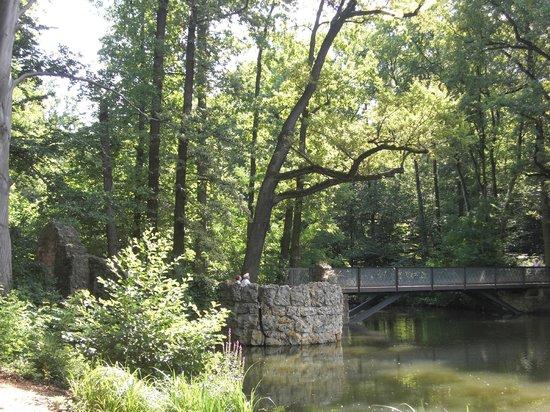 Stein, Allemagne : 橋