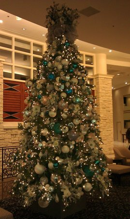Hilton Dallas Lincoln Centre: Nice tree