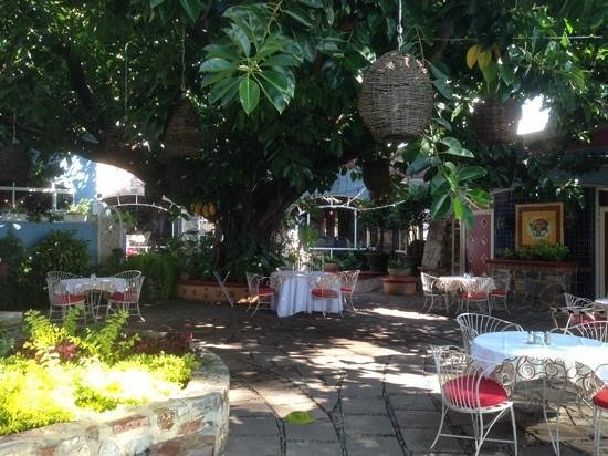 La Nueva Posada: Breakfast in the garden