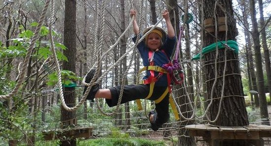 Adventure Forest: Ballerina in the ropes
