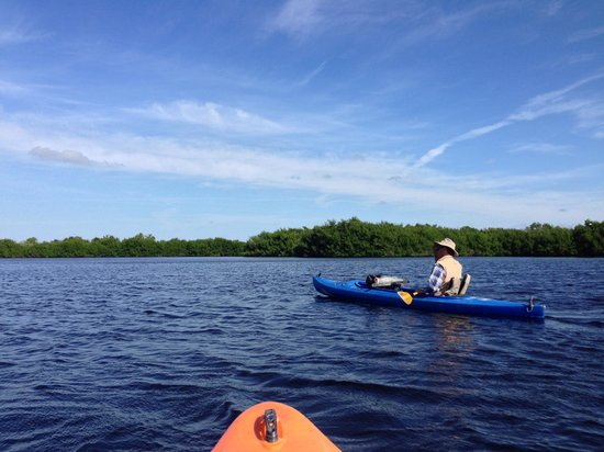 Tour the Glades - Private Wildlife Tours: In open waters