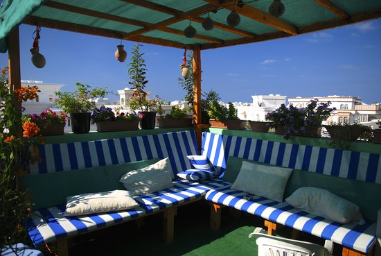 Nomad Guest House: Roof Top Garden