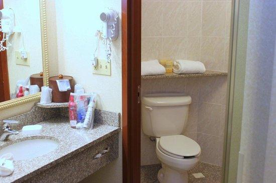 Drury Inn & Suites Dayton North: Bathroom
