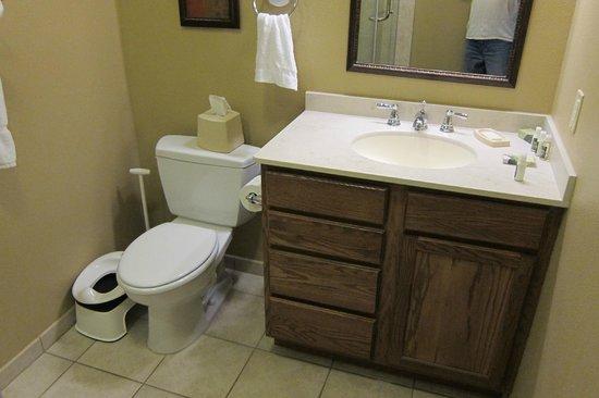 BlueGreen Odyssey Dells : Bathroom with shower
