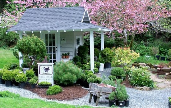 Wren House Garden & Shop