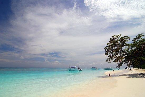 Ko Tachai Island: Beautiful blue sky, super soft white sand and turquoise sea....