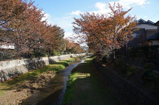 สวนโนกาวะ