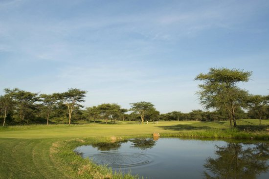 The Kilimanjaro Golf and Wildlife Estate: Stunning one acre plots for sale on the golf course.