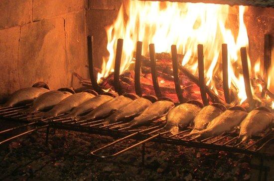 Li Catauri B&B: Repas préparé Salvatore et l'ensemble des touristes