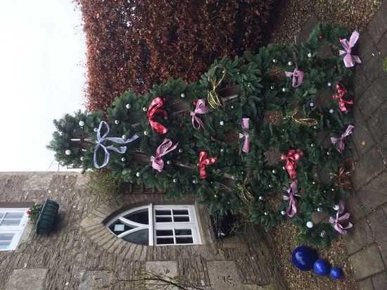 Tollgate Teashop: Wreath tree decoration at The Tollgate..