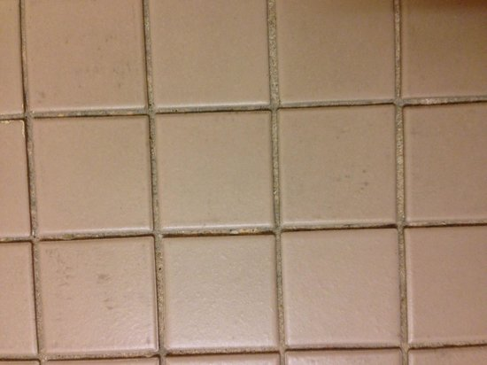 Millennium Harvest House: Filthy bathroom floor