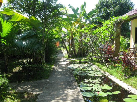 Sabaidee Guesthouse: JARDIN LUXURIANT