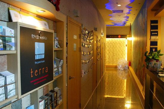 Terra Guesthouse: terra