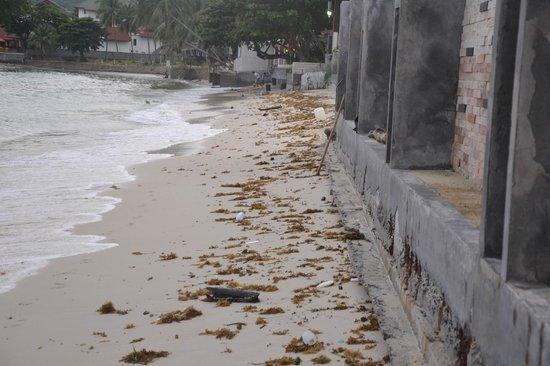 Samui Resotel Beach Resort: Strand