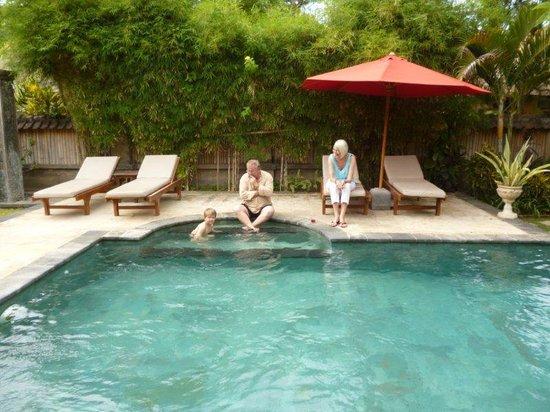 Taman Sari Bali Resort & Spa : Great pool at Villa Ratih Taman Sari