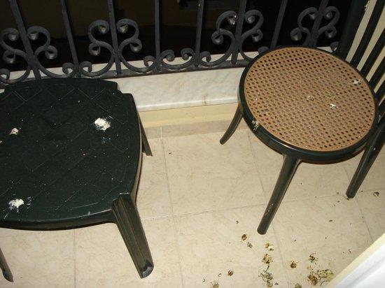 Kleopatra Royal Palm Hotel: vogel kot wurde nicht gesäubert