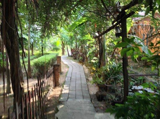 Sabaidee Guesthouse: JARDIN
