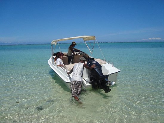 Namori Tours Sortie Dauphins : Le petit bateau