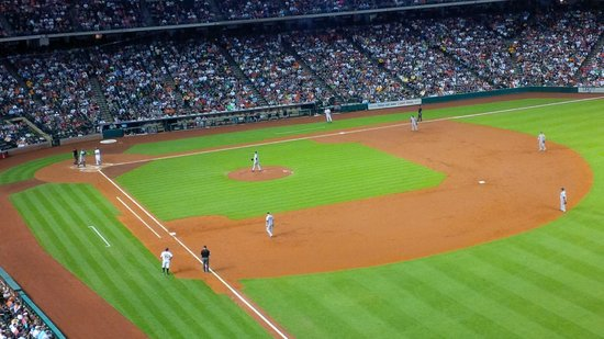 Minute Maid Park: View