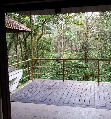 Deep Woods Resort: The balcony