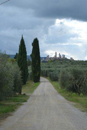 Agriturismo Torre Prima: panorama