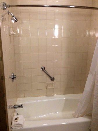 Hyatt Regency Pittsburgh International Airport: Room 1126 shower and tub