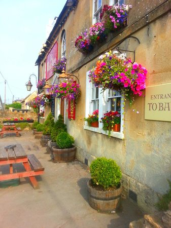 The White Hart: more flowers