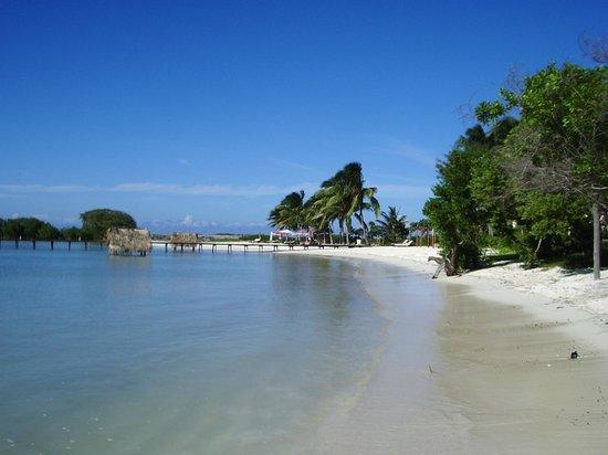 Melia Buenavista: plage du coté ouest
