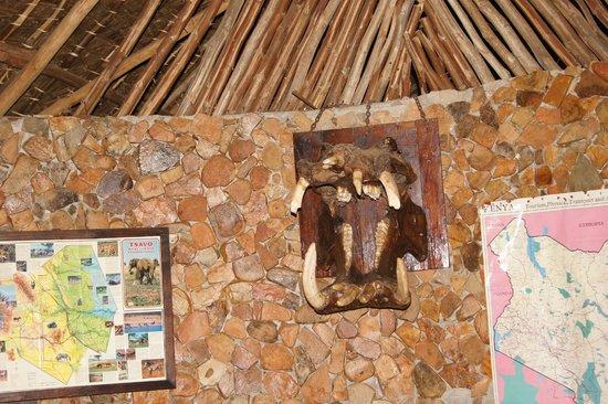 Kiboko Camp: reception